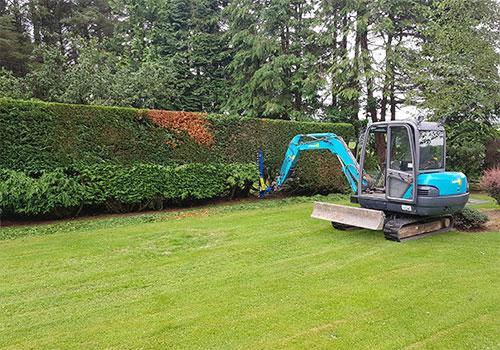 Precision Hedge Cutting