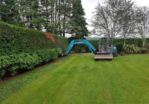 Hedge Cutting Slide 4