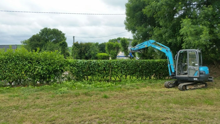 Hedge Cutting Cork